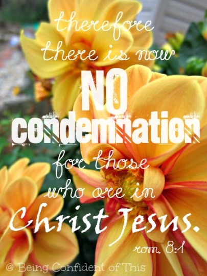 no condemnation, confidence in Christ, identity in Christ, position in Christ