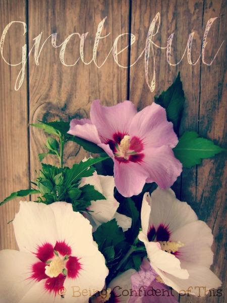 Grateful, gratitude, hard times, motherhood