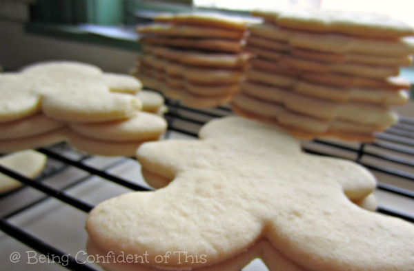 the fifth cookie lessons in boundaries, God's-boundaries-for-our-good, why-God's-boundaries-are-for-our-benefit, over-weight, healthy-living, healthy choices, obedience